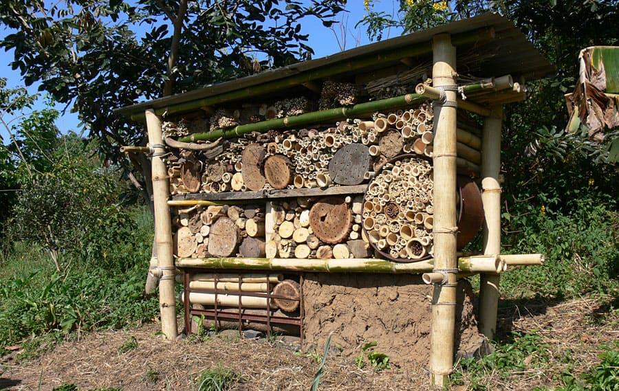 Insectenhotel permacultuur Bor Borren
