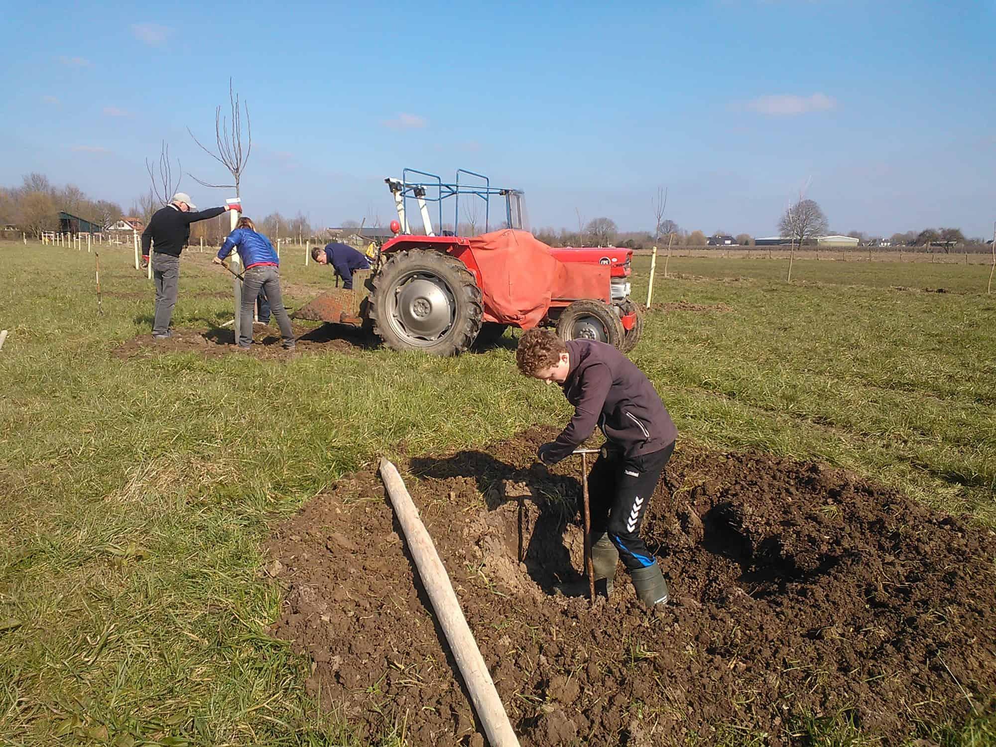 Bomen planten maart 2016 permacultuur Beusichem
