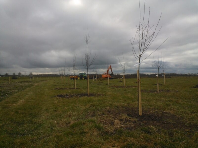 Landschap in wording maart 2016  permacultuur Beusichem