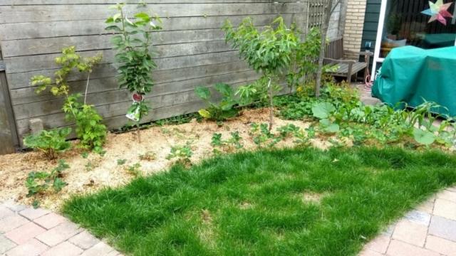 stukje gras voor kinderbadje en droogmolen